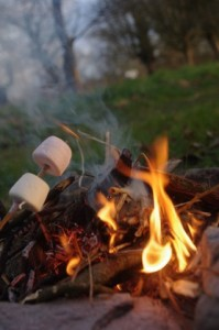 I could blog at length on how to toast the perfect marshmallows. Another time.